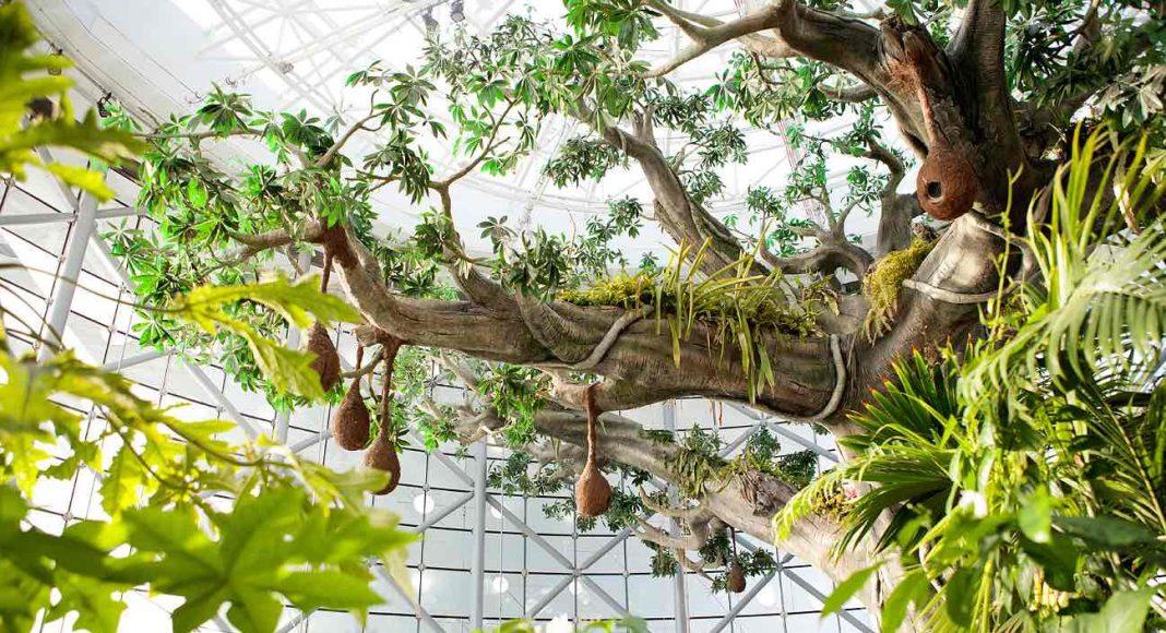 green planet dubai zooceanarium biodome 150 (1)