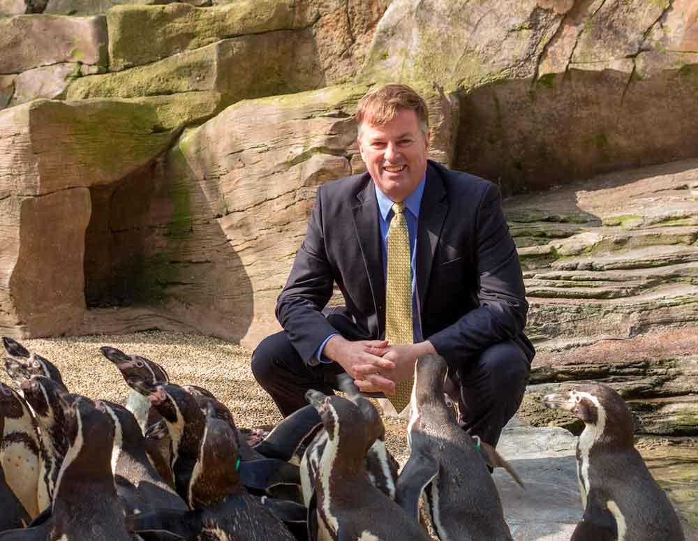 bob montgomery longleat safari park penguins