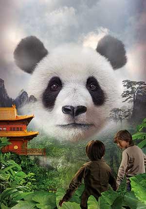 pandasia Ouwehands Zoo giant pandas