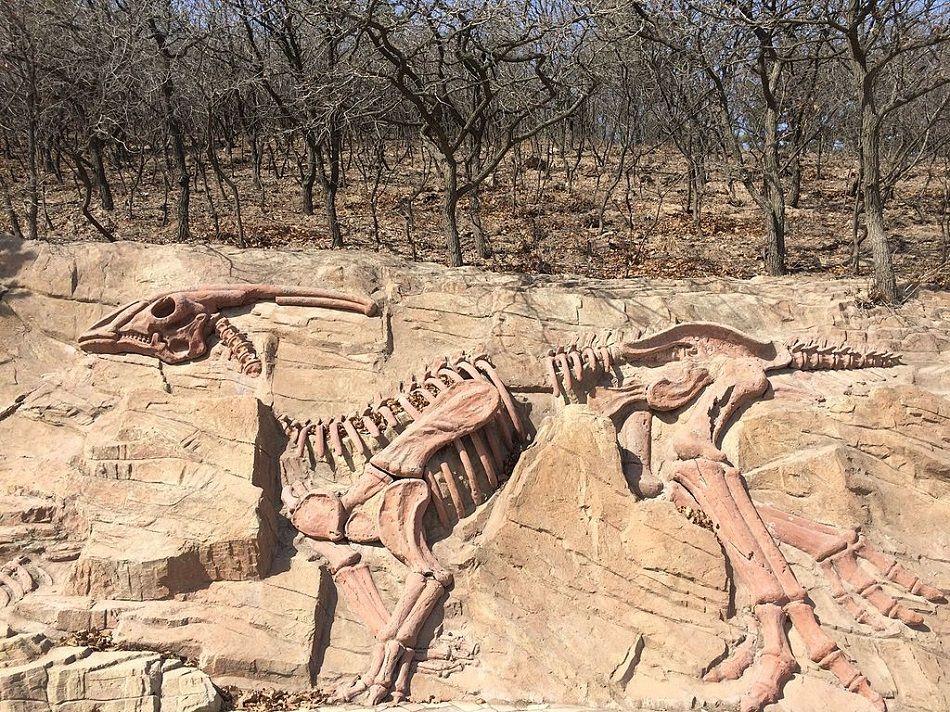Dinosaur. Theme Park. Dinosaur theme park. China. Yunyang Pu'an Dinosaur Geopark. Fossils. Fossil.