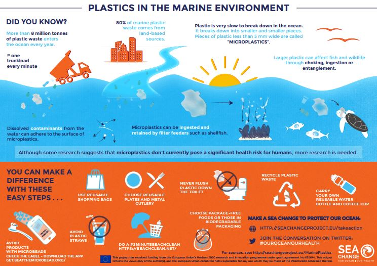 infographic on plastic pollution world oceans day