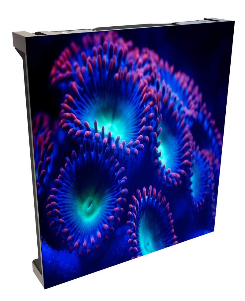 christie velvet coreplus LED video wall panel