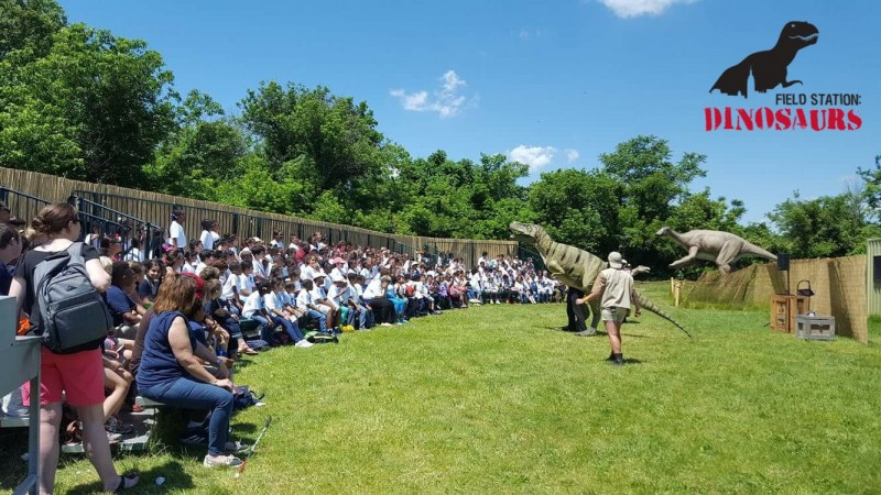 A live show at Field Station Dinosaurs.