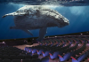 Maui Ocean Center dome theatre rendering