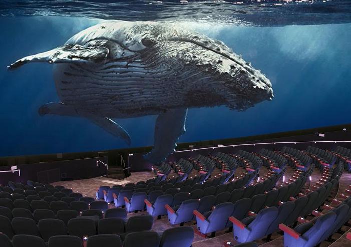 Maui Ocean Center dome theatre rendering