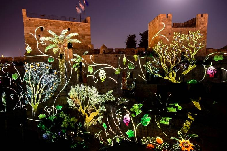 flowers and plants projected on tower of david citadel