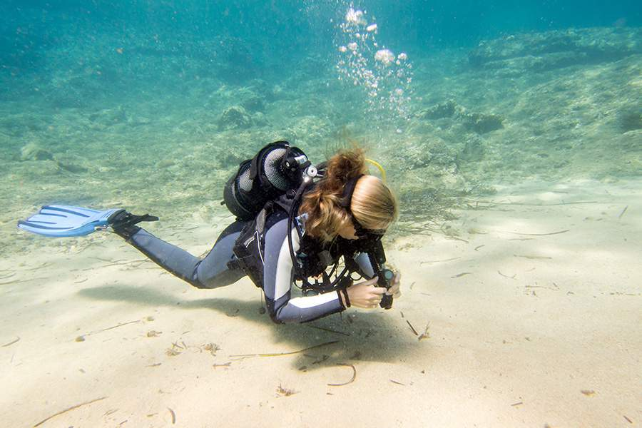 diver carries out marin research supported by clear reef social rund