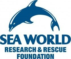 se world research and rescue foundation