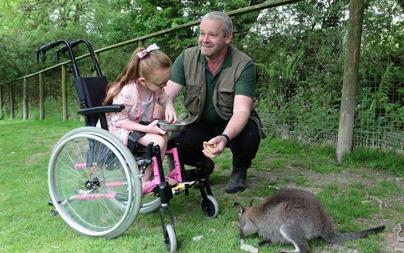 curator derek exmoor zoo