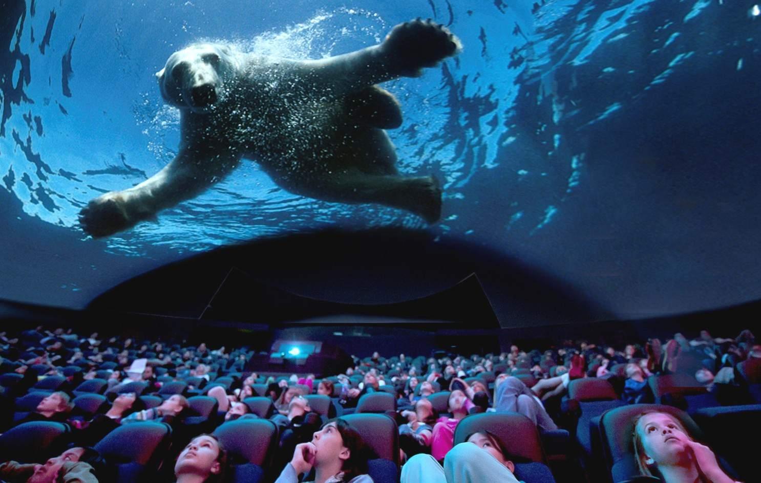 euromax polar bear giant dome cinema