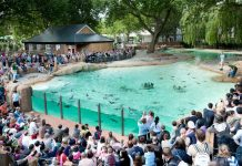 Magic Memories renews contract with ZSL London Zoo; new deal with ZSL Whipsnade Zoo