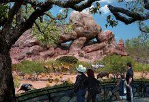 PGAV Destinations design Chihuahuan Desert Exhibit at El Paso Zoo