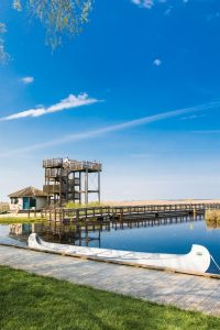 Point pelee national park tower