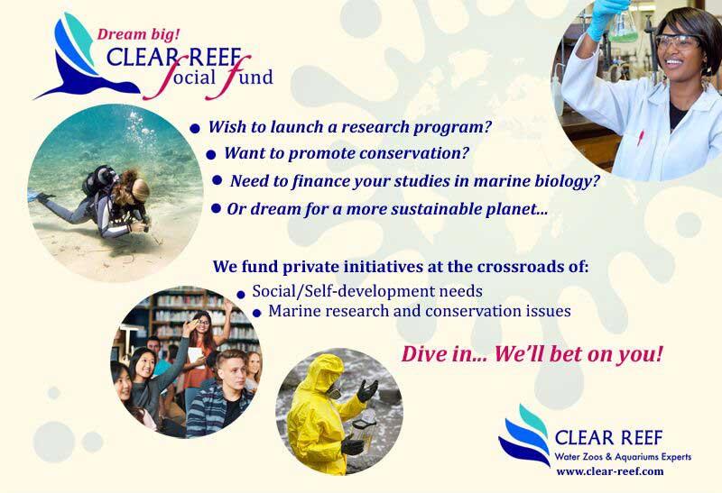clear reef social fund flyer