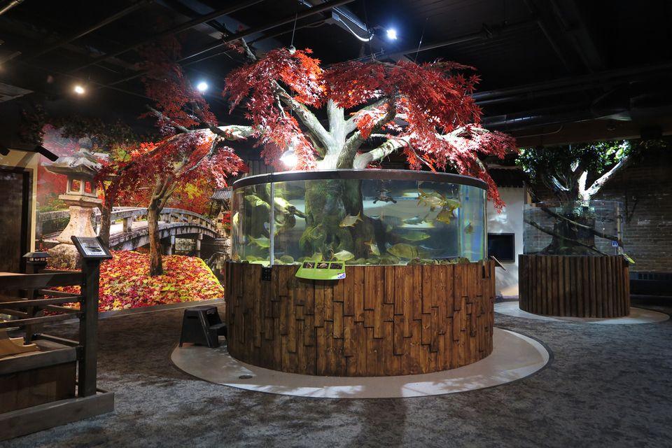 Greater Cleveland Aquarium renovation project.