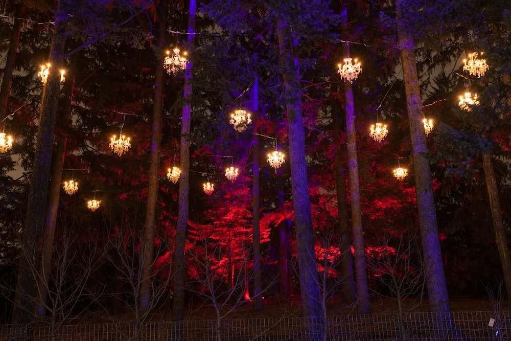 Crystal Promenade morton arboretum