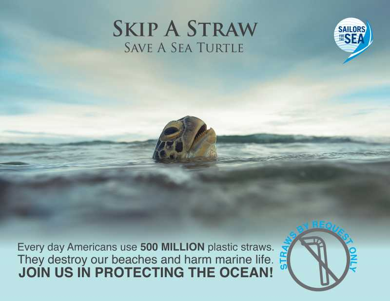 plastic pollution skip a straw poster with turtle