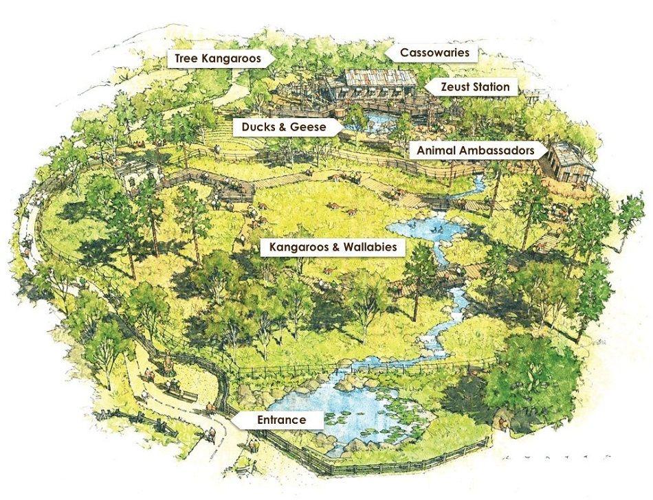 Walkabout Australia Opening At San Diego Zoo Safari Park Blooloop