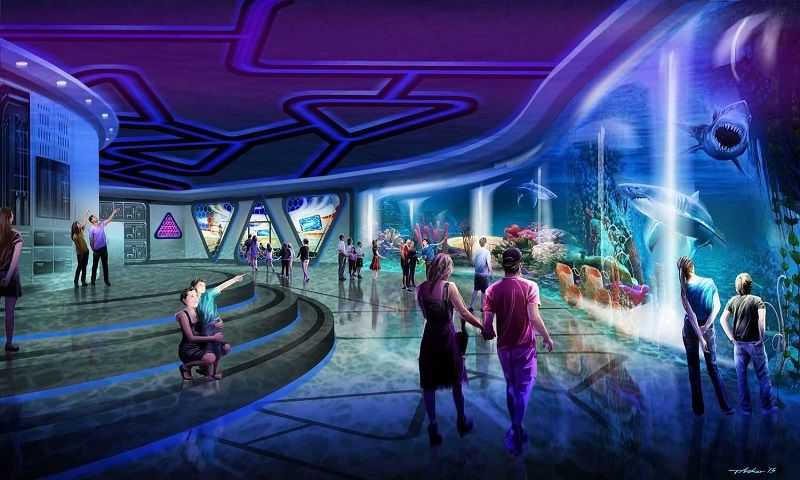 Taylor Jeffs shark interior blue room people shanghai haichang ocean park