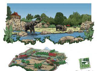 Cincinnati Zoo Elephant Trek