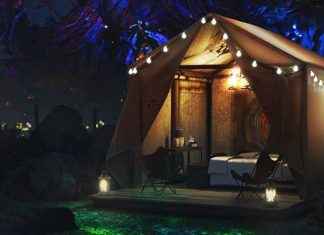 Disney dcamp exclusive glamping in Pandora competition