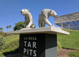 la brea tar pits and museum cave lion sculptures