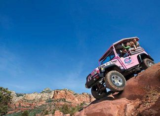 Pink Adventure Tours Herschend