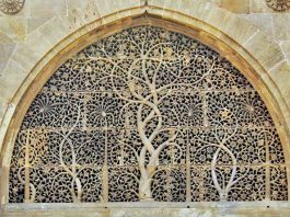 Ahmedabad Sidi Saeed Mosque