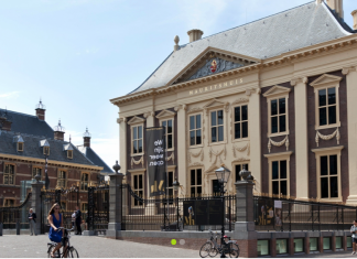 The Hague Mauritshuis Imagineear