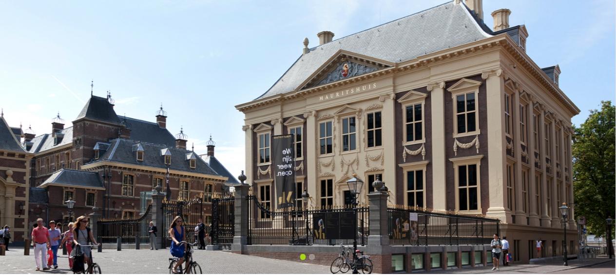 The Hague Mauritshuis Imagineear