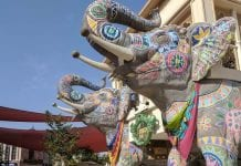 elephants at dubai parks and resorts a