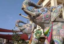 elephants at dubai parks and resorts a