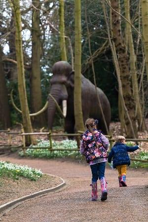 ROARR dinosaur adventure mammoth