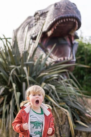 ROARR dinosaur adventure young boy and T-Rex