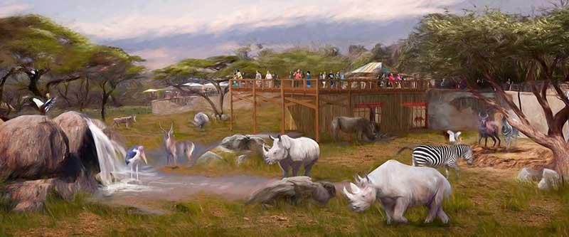 san antonio zoo rhino