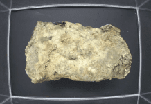 Museum of London livestreams fatberg artefact