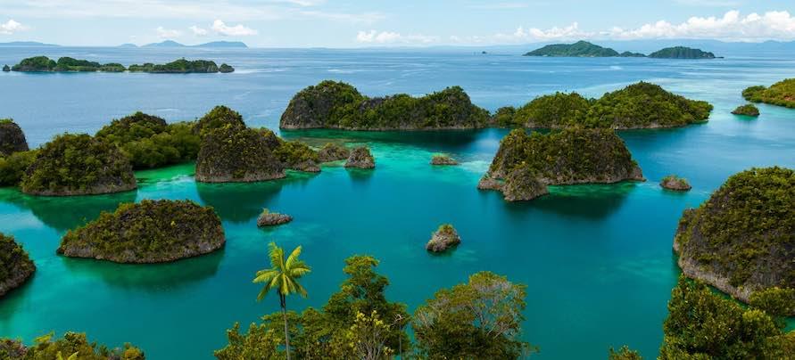 Fam Island, Raja Ampat, Papua New Guinea.