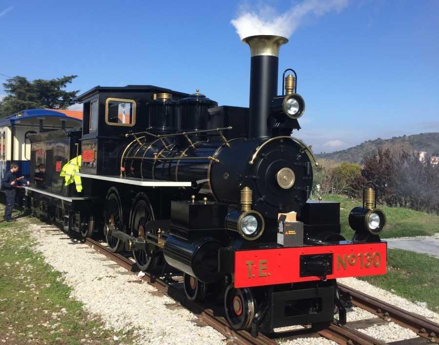 severn lamb steam train tua express
