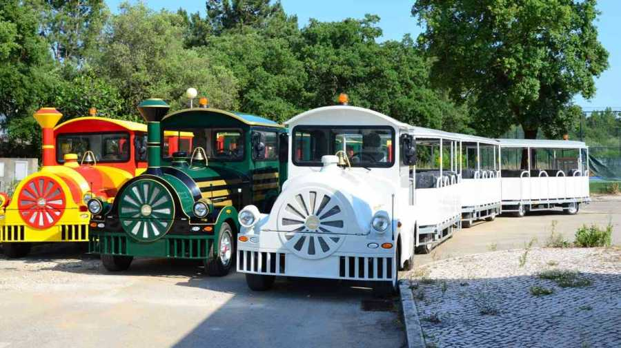 Severn Lamb land trains