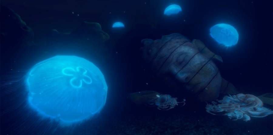 DIVR vr snorkelling attraction featuring jellyfish