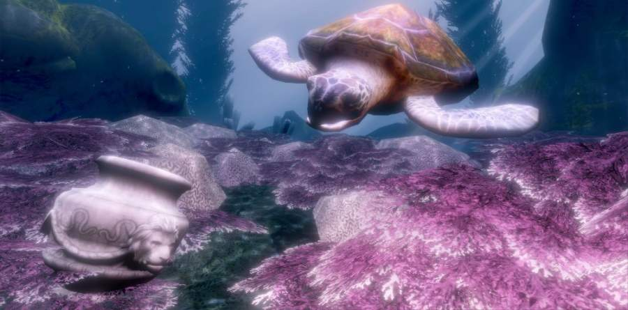 DIVR vr snorkelling with turtles