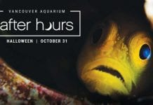 Vancouver Aquarium Halloween evening for adults