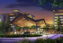 New nature-inspired resort set for Disney World
