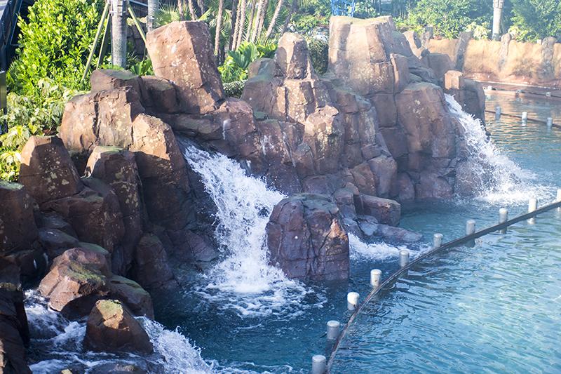 Infinity Falls at SeaWorld Orlando: tallest drop on a river raft