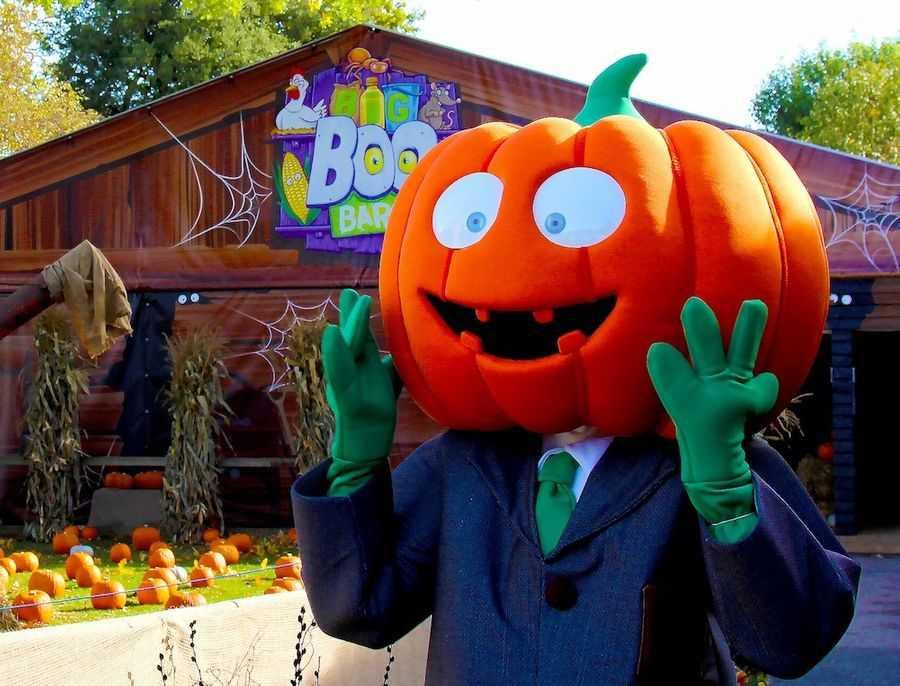 BALPPA_Halloween_Pickles-the-Pumpkin-at-Paultons-Park.jpg