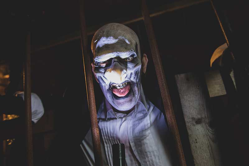 insomnia screamfest burton horror maze