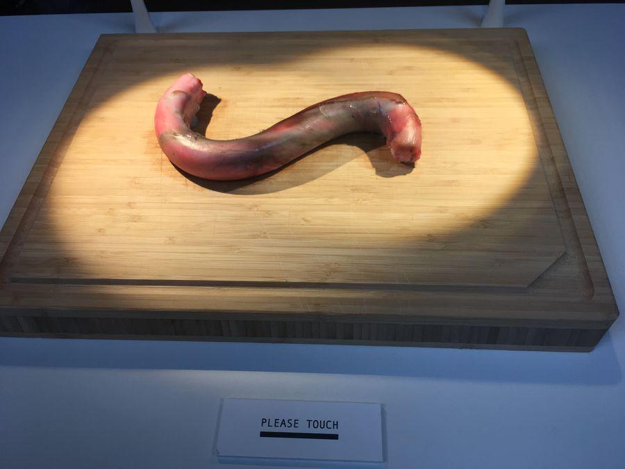 Bull Penis, Disgusting Food Museum