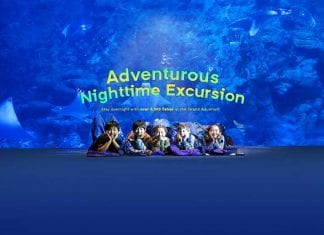 Ocean Park Adventure Camp edutainment Hong Kong