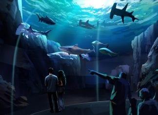 Georgia Aquarium interpectral