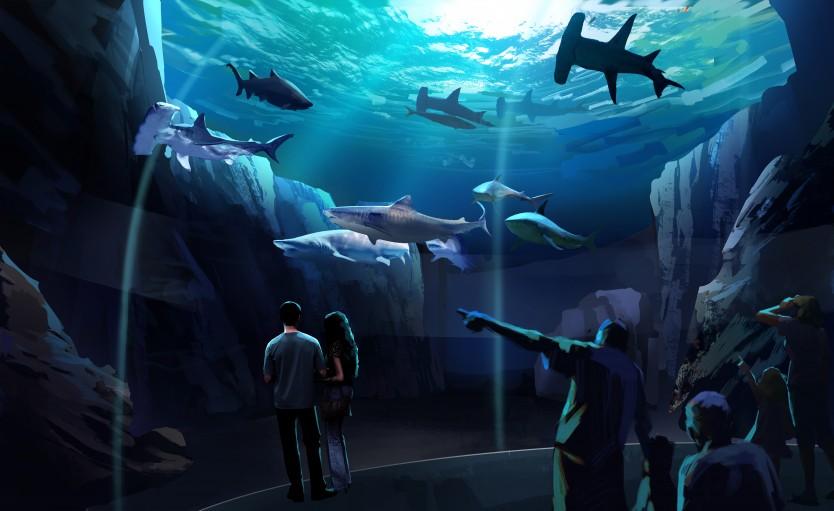 Georgia Aquarium partners with Interspectral | blooloop
